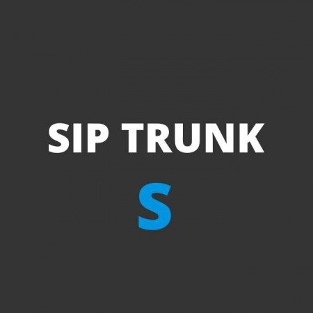 SIP trunk S